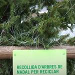 Hora de reciclar els arbres de Nadal