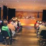 Darrer Consell Plenari de 2012