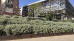 Aprovat inicialment el nom de Jardins de Pilar Espuña